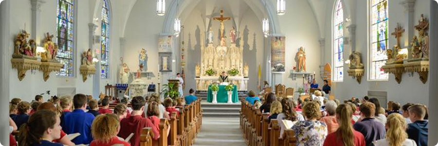 saint bernard catholic school